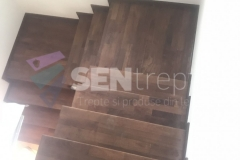 Trepte lemn stejar
