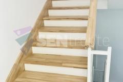 Trepte in doua culori cu balustrada 16