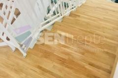 Trepte in doua culori cu balustrada 17