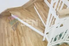 Trepte in doua culori cu balustrada 6