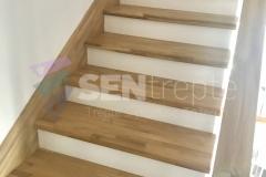 Trepte in doua culori cu balustrada 8