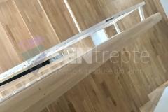 Trepte in doua culori cu balustrada 9