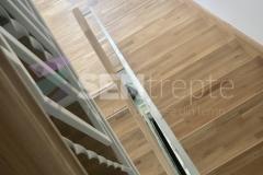 Trepte in doua culori cu balustrada 12