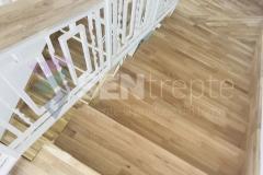 Trepte in doua culori cu balustrada 2