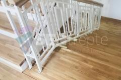 Trepte in doua culori cu balustrada