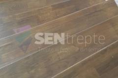 Trepte lemn stejar bicolore 13