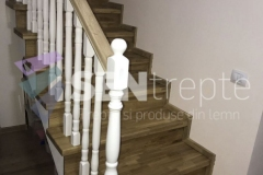 Scara-cu-balustrada14