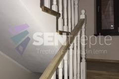 Scara-cu-balustrada19