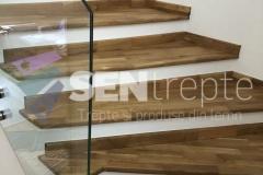 Trepte-lemn-cu-balustrada-din-sticla