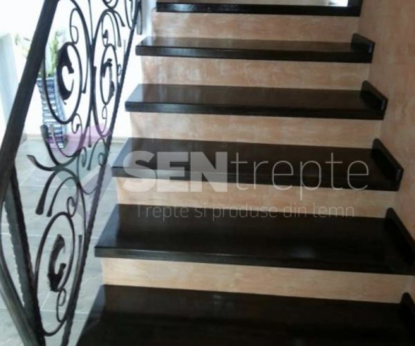 scara placata cu lemn si balustrada din fier forjat
