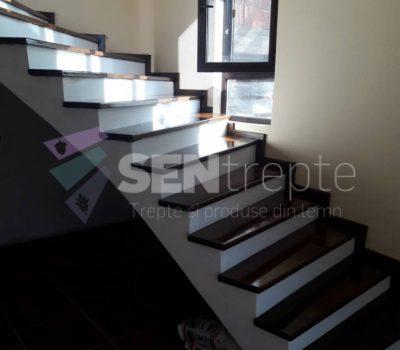 scari interioare din beton placate cu lemn