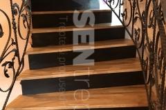 Scara cu balustrada din fier forjat  7