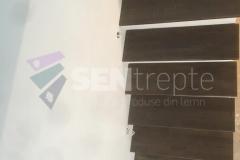 Trepte-in-doua-culori9