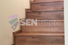 scara-lemn-stejar-1