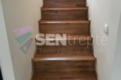scara-lemn-stejar-5